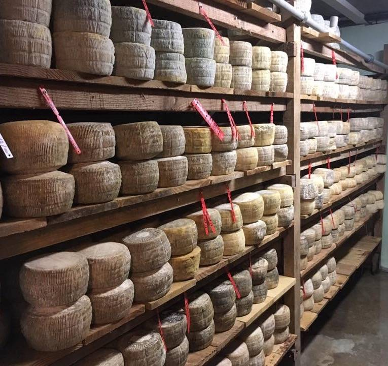 O trouver du fromage bio montpellier fromagerie for Ou trouver du bois flotte montpellier